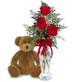 Charming 3 Red Roses and Teddy
